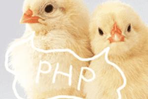 【独習PHP】04_定数