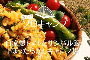 【野遊びソロキャンプ】#9 自家製トマトとサンバル飯「ほったらかしキャンプ場」