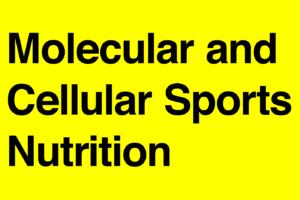 要約メモ|スポーツ栄養学