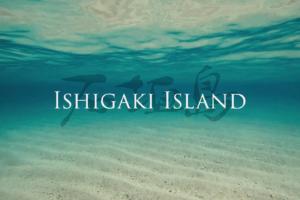 石垣島10日間の旅