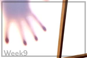 Week9「障子を張り替える癒し映像と、家の中に横から差し込む光」